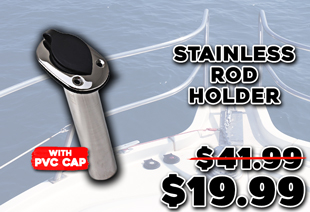 Stainless Steel Rod Holder with PVC Cap